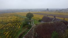 Drone 2 Vouvray