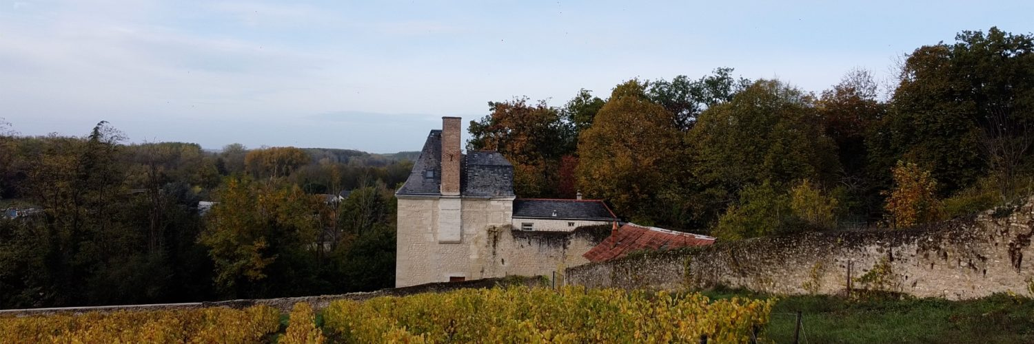 Drone 4 Vouvray